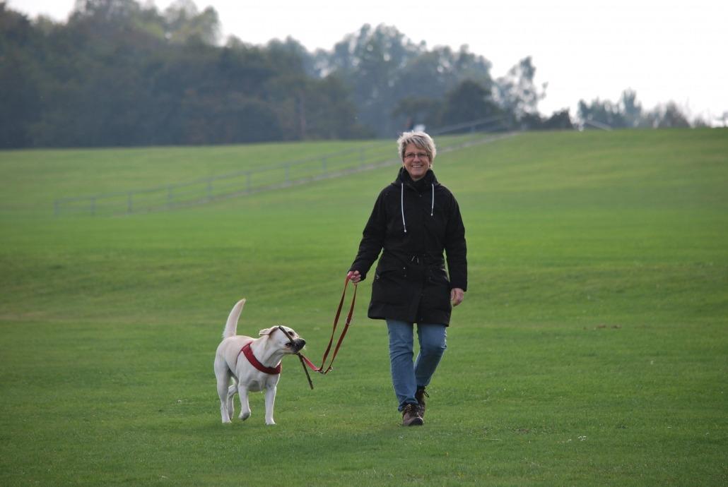 Spaziergeher mit Hund