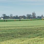 Feld bei der Treibjagd