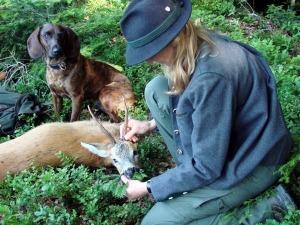 Jägerin mit Bock und Bruch